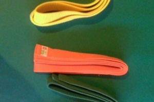 yellow-orange-green-belts