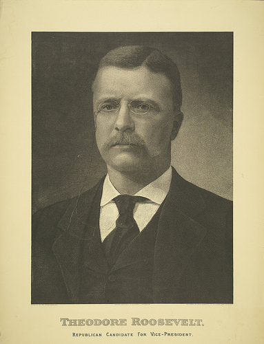 theodore-roosevelt-1900